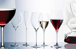 Red and white wine tasting glasses