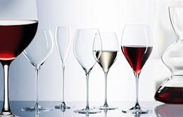 Red and white wine tasting glasses